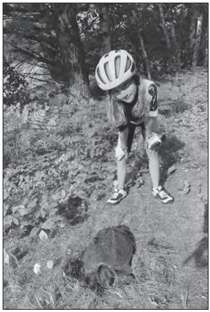 Photo of Abby looking at a turtle by the road.